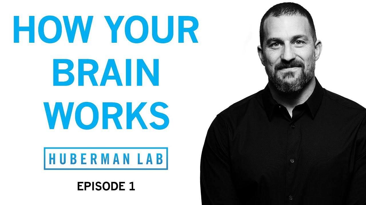 Huberman Lab Podcast Episode 1 Title Card