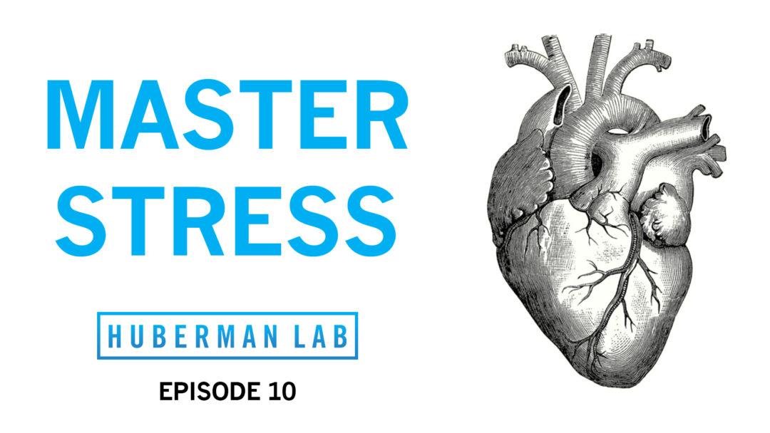 Huberman Lab Podcast Episode 10 Title Card