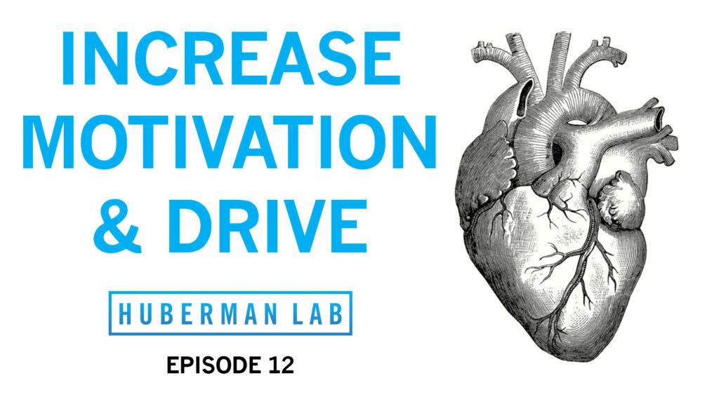Huberman Lab Podcast Episode 12 Title Card