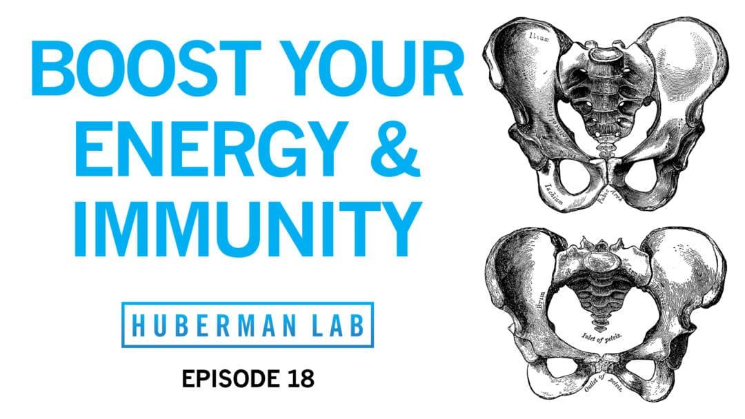 Huberman Lab Podcast Episode 18 Title Card