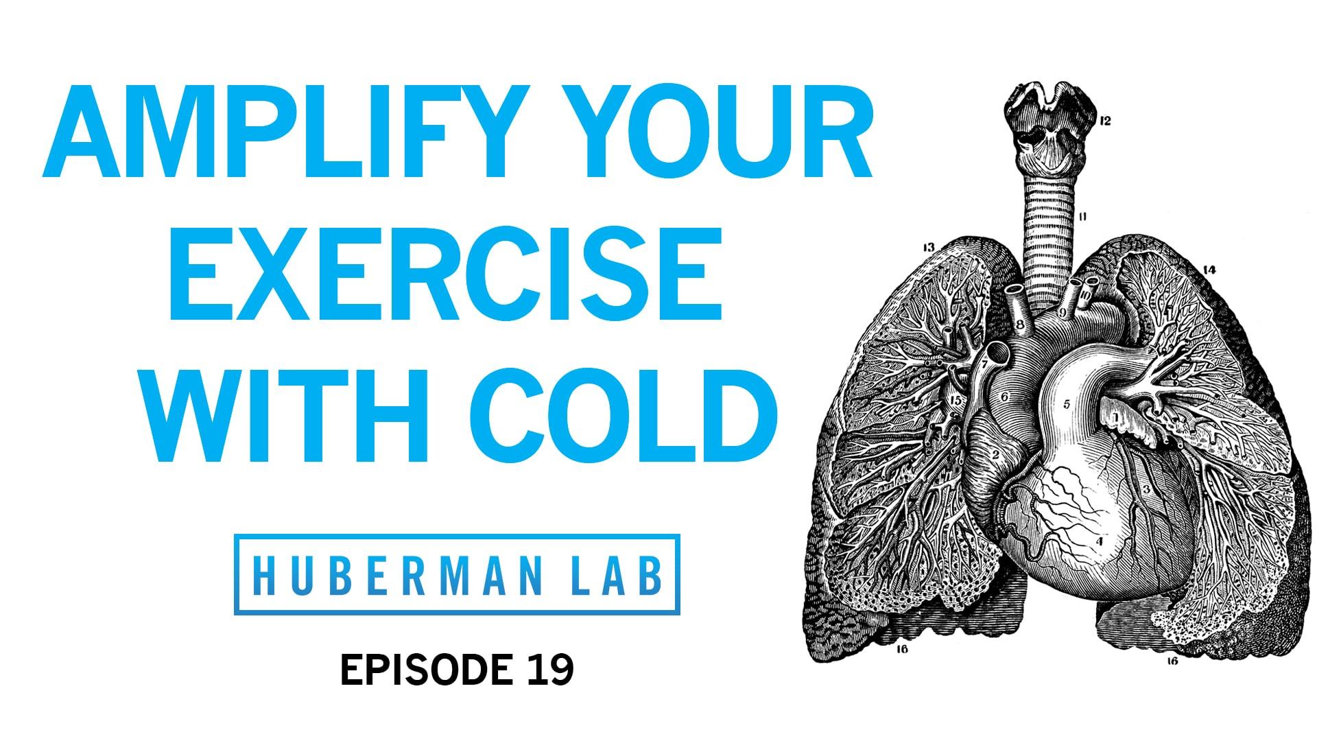 Huberman Lab Podcast Episode 19 Title Card