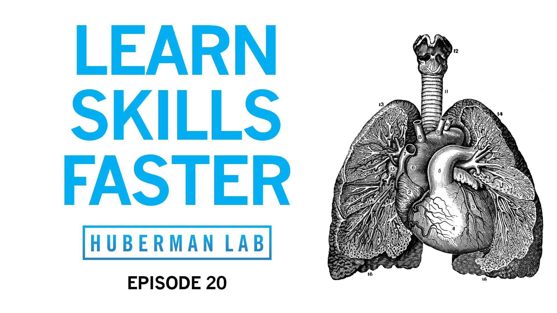 Huberman Lab Podcast Episode 20 Title Card