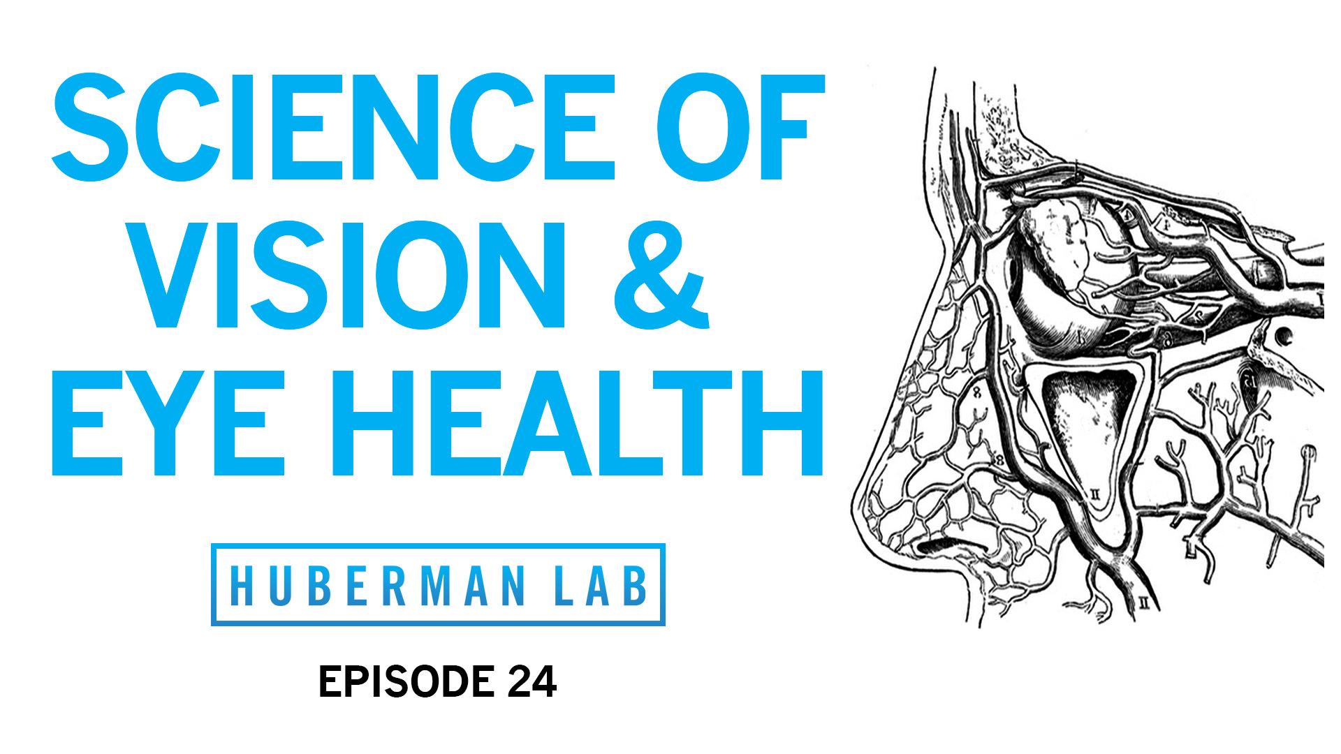 Huberman Lab Podcast Episode 24 Title Card