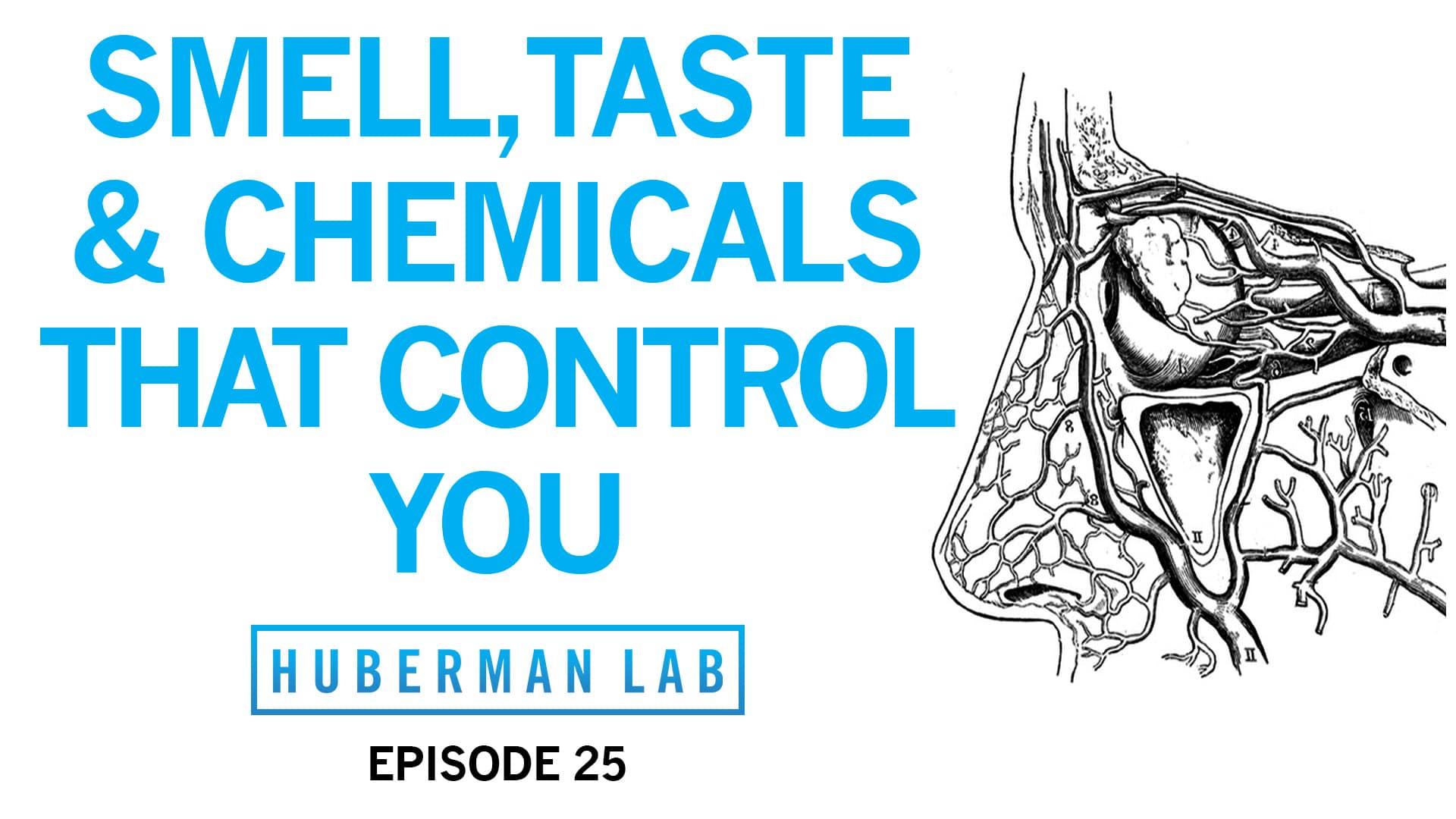Huberman Lab Podcast Episode 25 Title Card