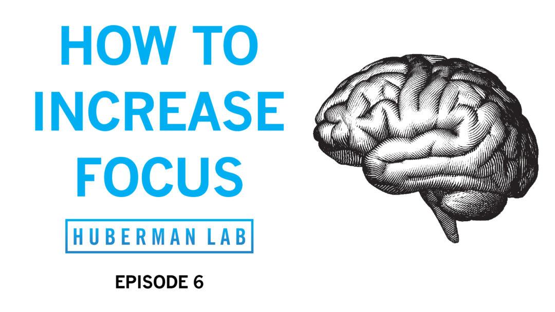 Huberman Lab Podcast Episode 6 Title Card