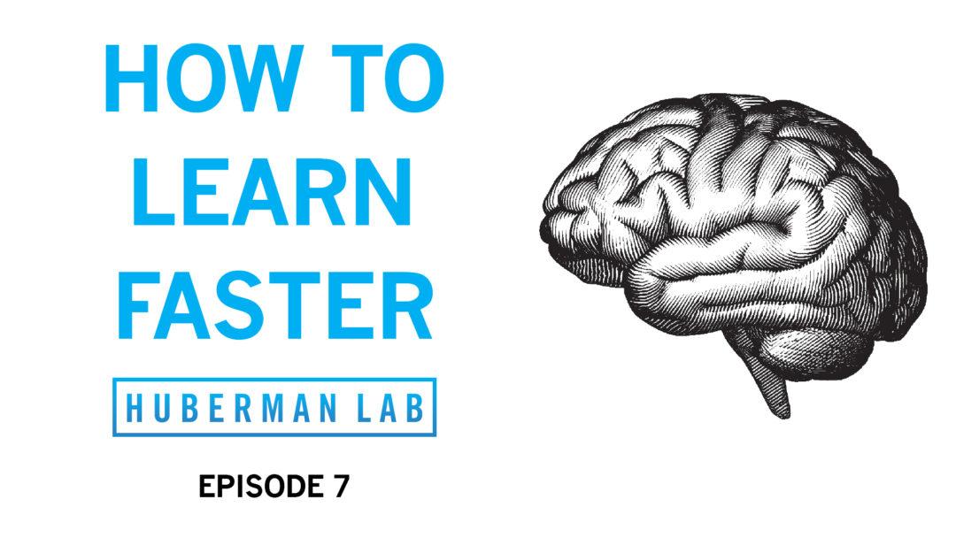 Huberman Lab Podcast Episode 7 Title Card