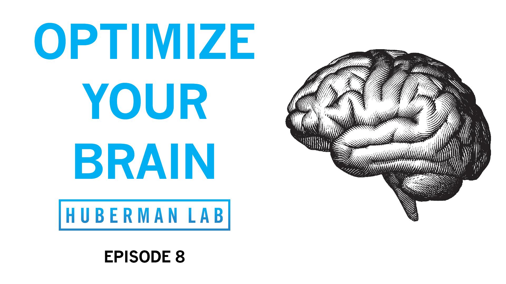Huberman Lab Podcast Episode 8 Title Card