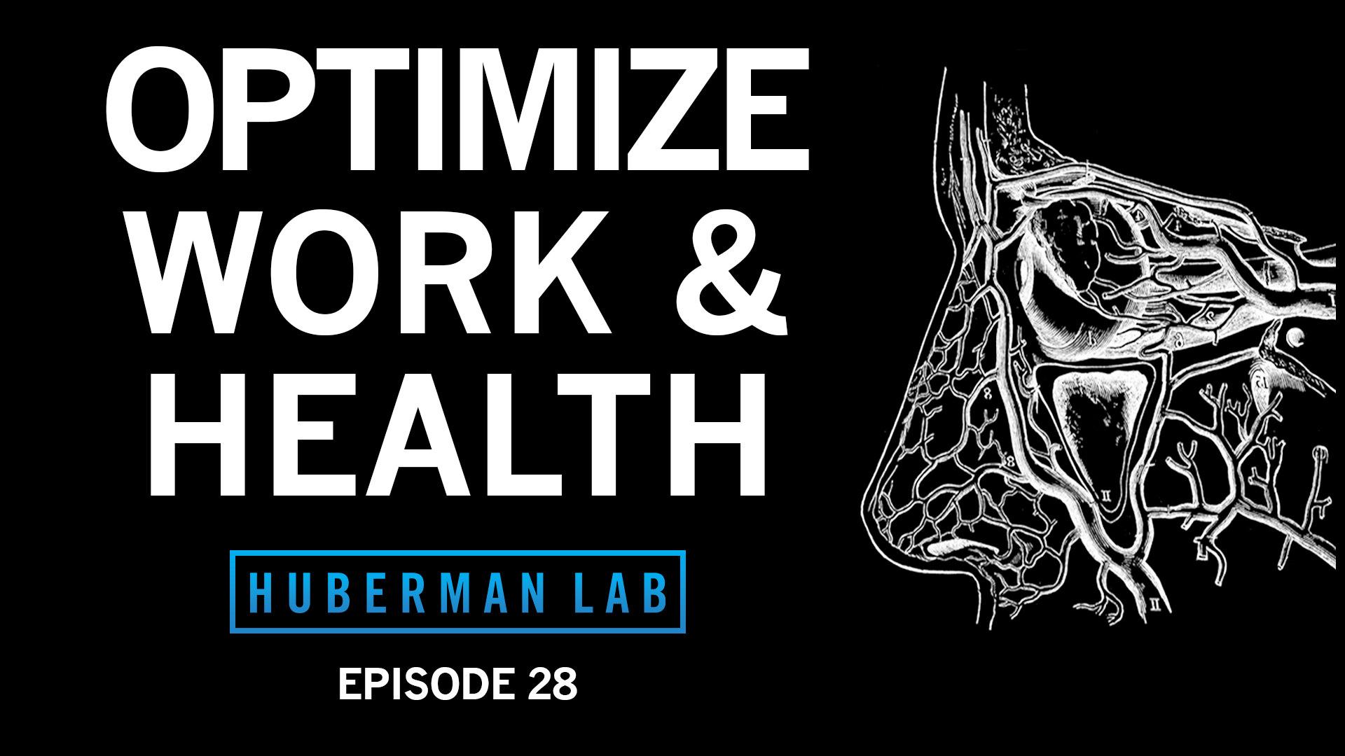 Huberman Lab Podcast Episode 28 Title Card