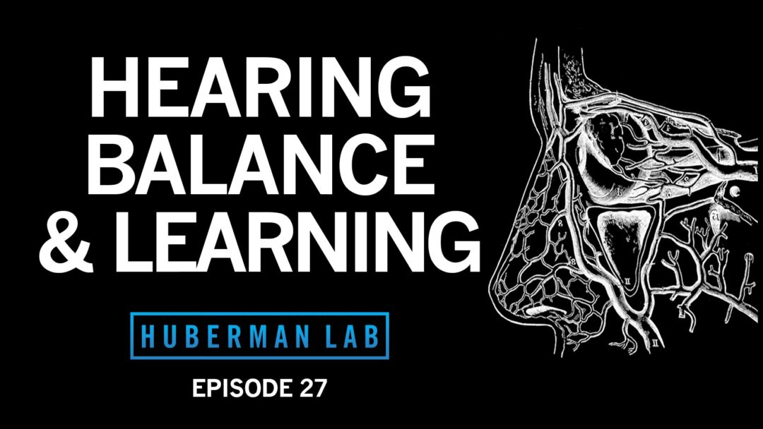 Huberman Lab Podcast Episode 27 Title Card